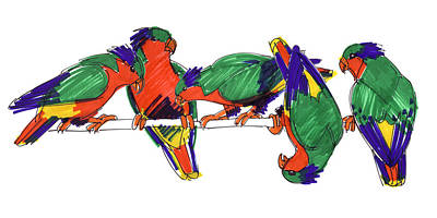 Drawing - Five Rimatara Lorikeets by Judith Kunzle
