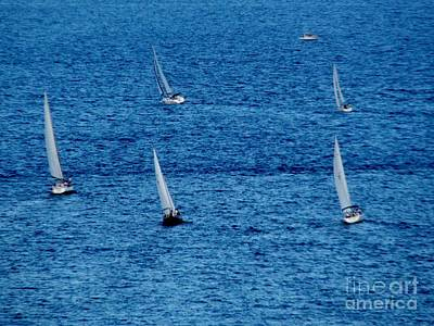 Photograph - Five Sails by Corinne Carroll