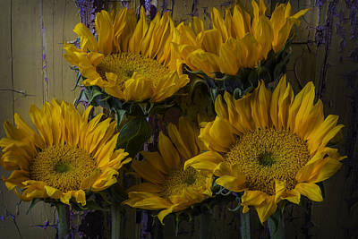 Chip Photograph - Five Sunflowers Against Old Wall by Garry Gay