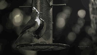 Tufted Titmouse Photograph - Fixated By The Light by DigiArt Diaries by Vicky B Fuller