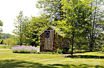 Flag At Glen Oaks Art Print by Addie Hocynec