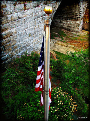 Photograph - Flag Day by Joan  Minchak