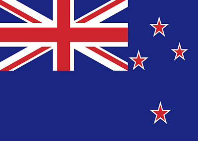 Flag Of New Zealand Art Print by Roy Pedersen