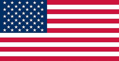 Patriotic Painting - Flag Of The United States Of America by American School