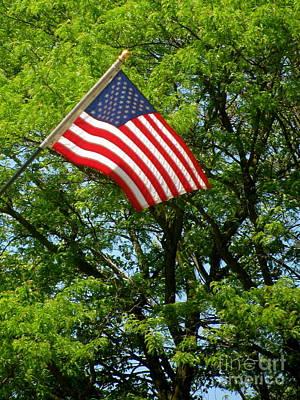 Kansas Photograph - Flag by Sherri Williams