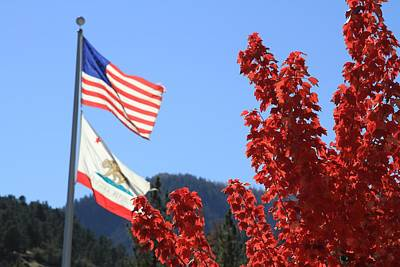 Photograph - Flags Flying In The Fall by Diana Chase