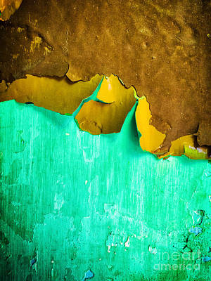 Photograph - Flaking Paint by Silvia Ganora