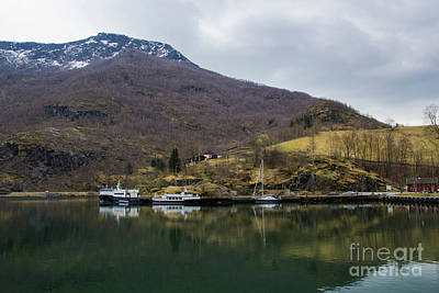 Photograph - Flam Reflections by Suzanne Luft