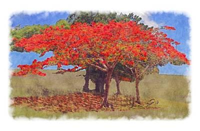Flamboyan Tree Painting - Flamboyan II by Yiries Saad