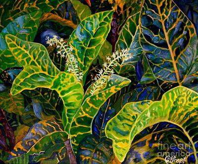 Mistletoe - Flamboyant Croton by Caroline Street