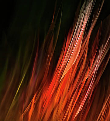 Photograph - Flame Grass  by Theresa Tahara