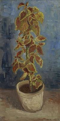 Painting - Flame Nettle In A Flowerpot Paris June   July 1886 Vincent Van Gogh 1853  1890 by Artistic Panda