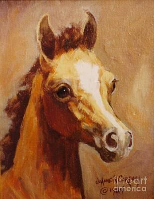 Flame Princess    Arabian Filly Portrait Art Print by JoAnne Corpany