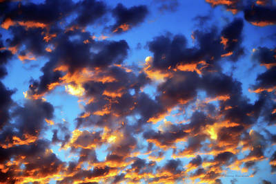 Photograph - Flame Upon The Firmament by Donna Blackhall