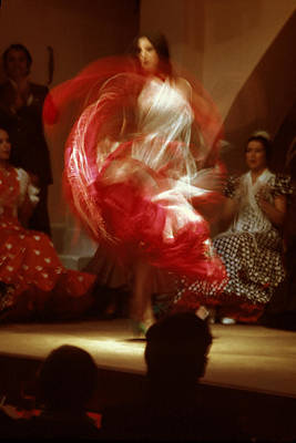 Flamenco Dancer In Seville Art Print