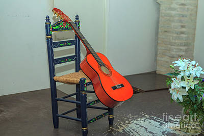 Photograph - Flamenco Guitar  by Patricia Hofmeester