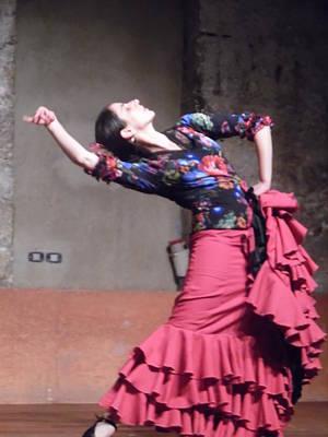 Photograph - Flamenco Passion by Esther Newman-Cohen