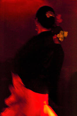 Flamenco Series 25 Art Print by Catherine Sobredo