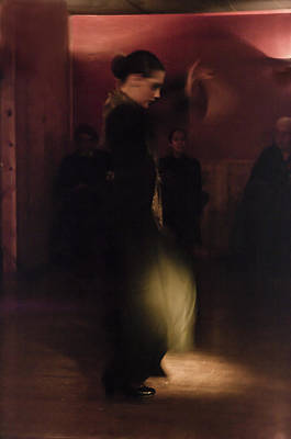Photograph - Flamenco Series 27 by Catherine Sobredo