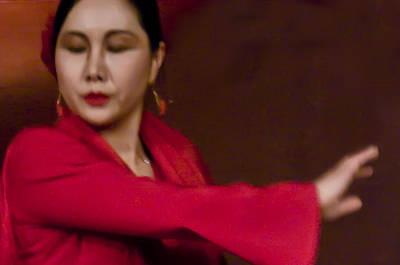 Photograph - Flamenco Series 29 by Catherine Sobredo