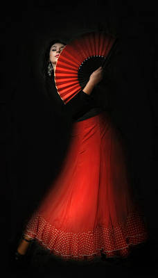 Flamenco Art Print by Viktor Korostynski