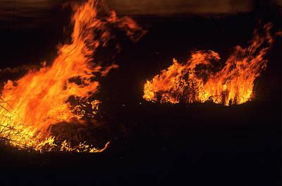 Photograph - Flames At Dusk by Robert Potts