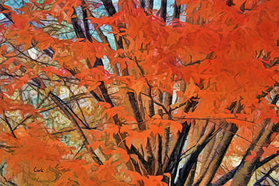 Digital Art - Flaming Fall Foliage by Terry Cork