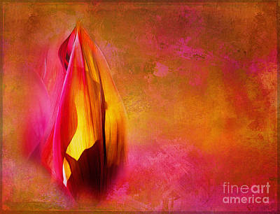 Photograph - Flaming Leaves by Judi Bagwell