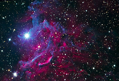 Flaming Star Nebula Art Print
