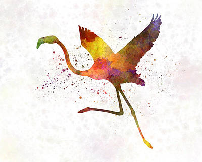 Greater Flamingos Painting - Flamingo 02 In Watercolor by Pablo Romero