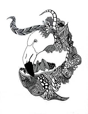 Drawing - Flamingo by Alexis Kadonsky