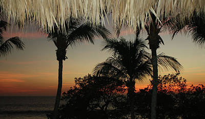 Digital Art - Flamingo Beach Bar View by Ellen Barron O'Reilly