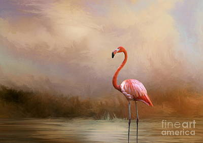 Photograph - Flamingo Beauty by Myrna Bradshaw