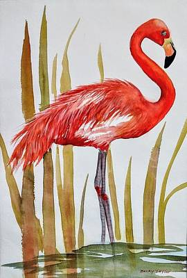 Waiting For Lunch Painting - Flamingo by Becky Taylor