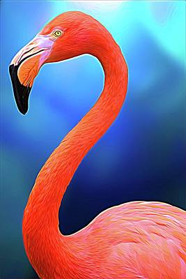 Photograph - Flamingo Blue by Alice Gipson