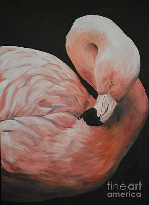Painting - Flamingo by Charlotte Yealey