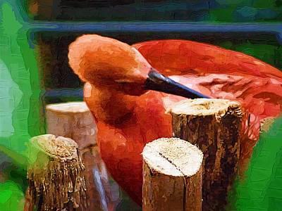 Flamingo Mixed Media - Flamingo by Deborah MacQuarrie-Selib