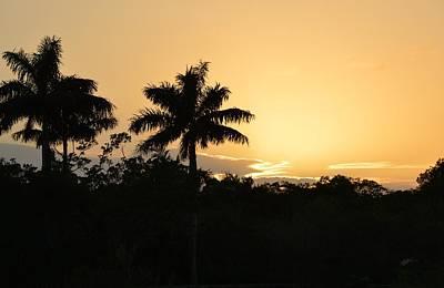 Photograph - Flamingo Everglades Sunset by rd Erickson
