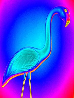 Flamingo Digital Art - Flamingo Fling by Randall Weidner