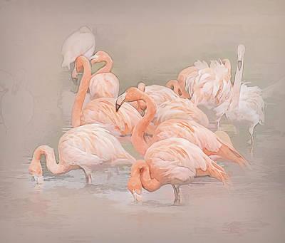 Photograph - Flamingo Fun by Brian Tarr