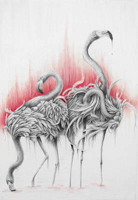 Drawing - Flamingo Herd  by Kay Walker