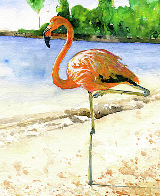 Painting - Flamingo by John D Benson