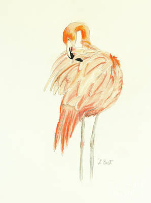 Painting - Flamingo by Laurel Best