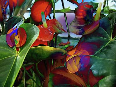 Photograph - Flamingo Lily Anthurium by Thom Zehrfeld