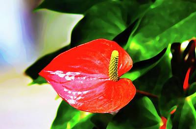 Photograph - Flamingo Lily by Susan Vineyard
