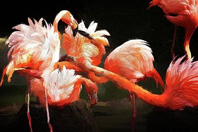 Photograph - Flamingo Mingles by Alice Gipson