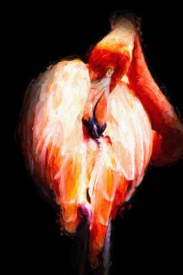 Flamingo Mixed Media - Flamingo On Black by Pati Photography