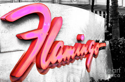 Photograph - Flamingo Pink In Las Vegas by John Rizzuto