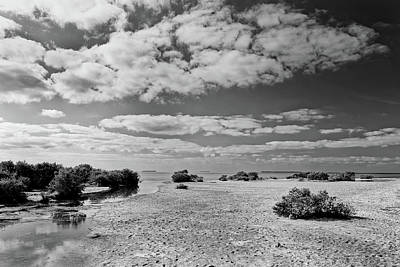 Photograph - Flamingo Point by Rudy Umans