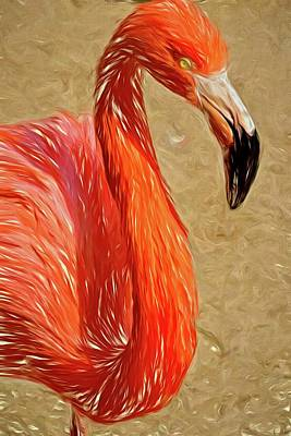 Photograph - Flamingo Portrait by Alice Gipson